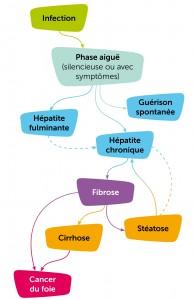histoire-naturelle-hepatites